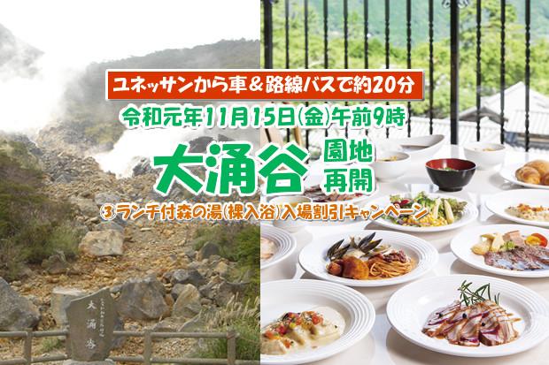 大涌谷園地再開記念キャンペーン③ランチバイキング付森の湯入場割引