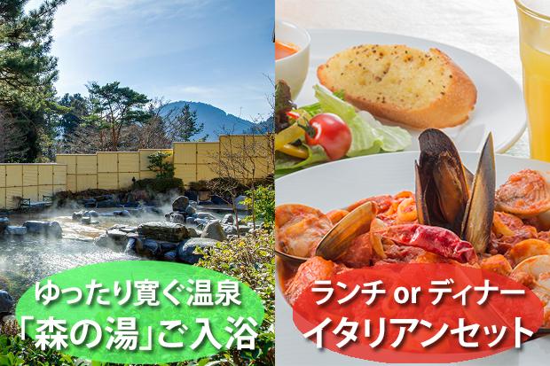 平日限定◎50歳からの大人の箱根旅★森の湯入浴&アンティパスタセット