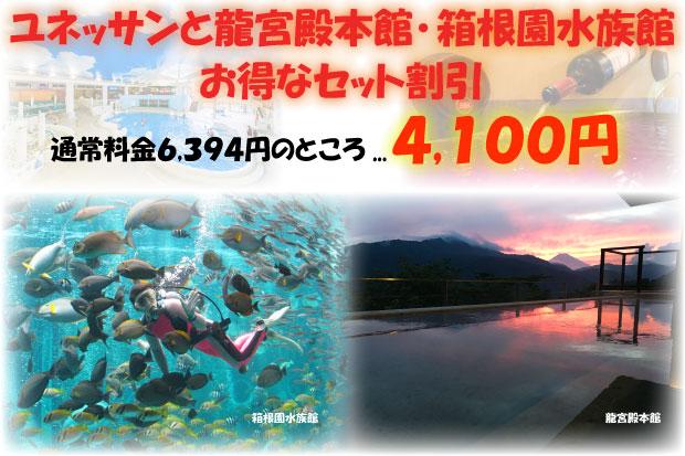 龍宮殿本館・箱根園水族館セットプラン