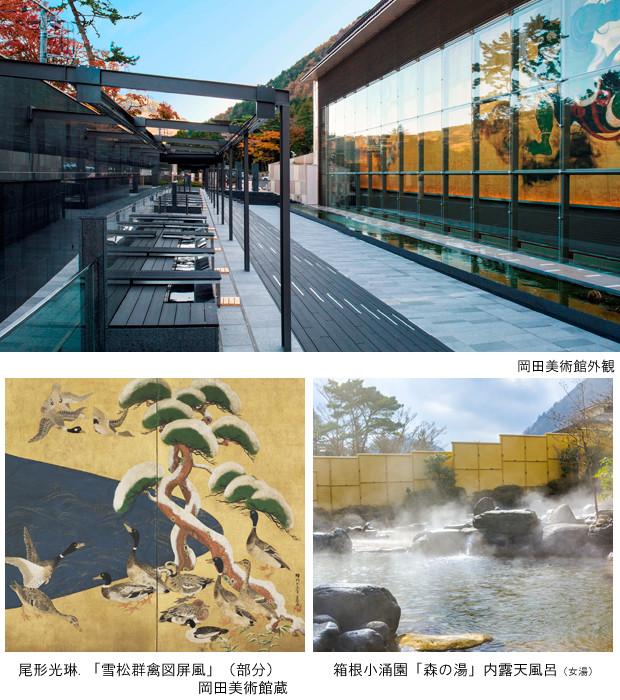 岡田美術館&森の湯プラン