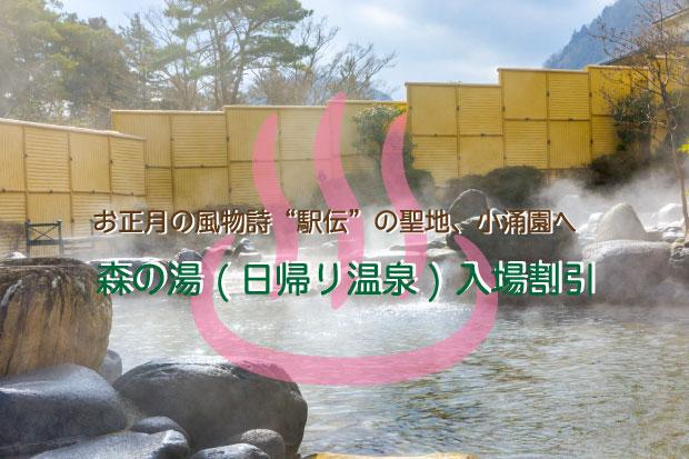 新春企画★駅伝の聖地、小涌園で日帰り温泉入浴!森の湯入場割引