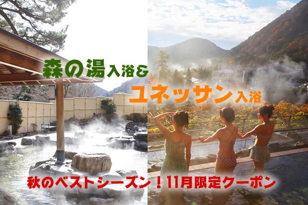 \11月限定★パスポート入場割引/秋の箱根ベストシーズンキャンペーン