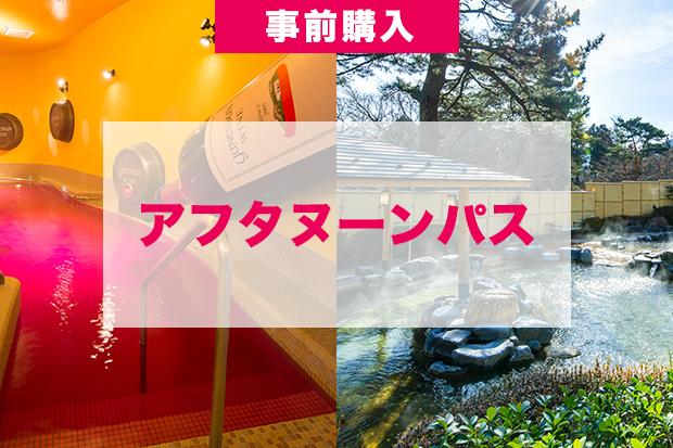 【アフタヌーンパス】13時入場でお得