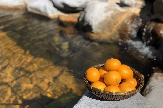 3月の季節風呂「清見の湯」