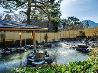 【森の湯】5月の季節風呂「新茶の湯」