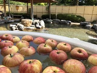 箱根小涌園ユネッサン 日帰り温泉 森の湯「りんごの湯」