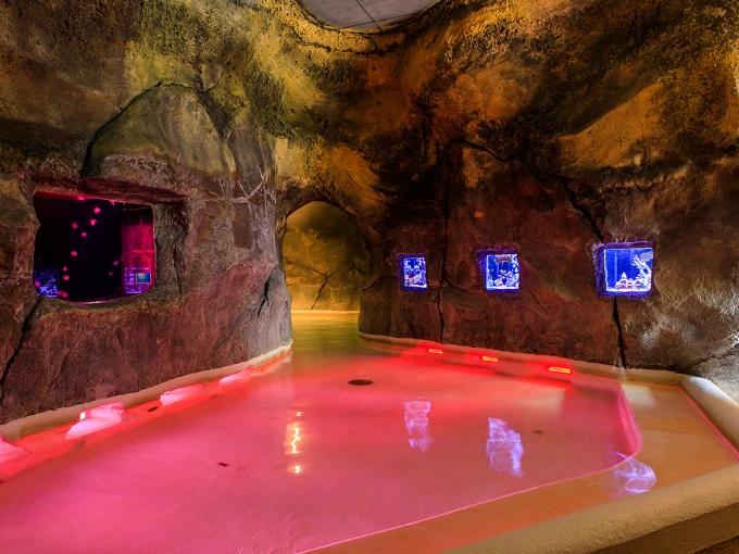 水着で遊ぶ温泉「ユネッサン」 洞窟風呂(ユネッサンアクアリウム)
