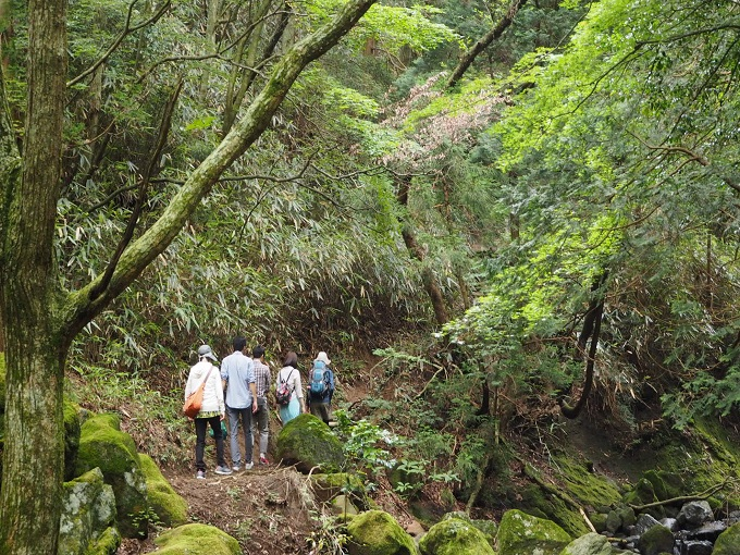 【イベント】登山部と楽しむ箱根の山のぼり